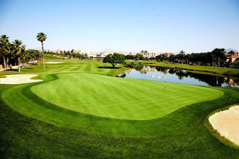 the 4th green of the Alicante Golf course