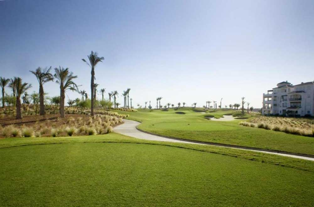 palm trees on the fairway of La Torre